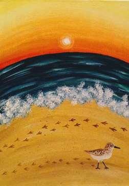 Sandpiper Sunset